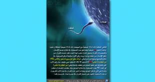 معجزه-قرآنی تعداد کروموزومها در قرآن