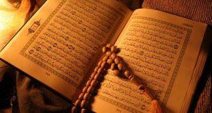 هشت مورد از پیش بینی های قرآنی که تحقق یافته اند