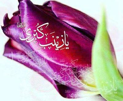 علت نامگذاری حضرت زینب (س) به عقیله بنی هاشم